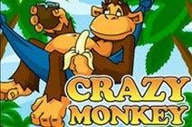 Crazy_Monkey_212x141